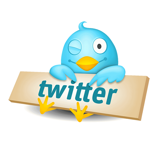 Graphic: Twitter bird