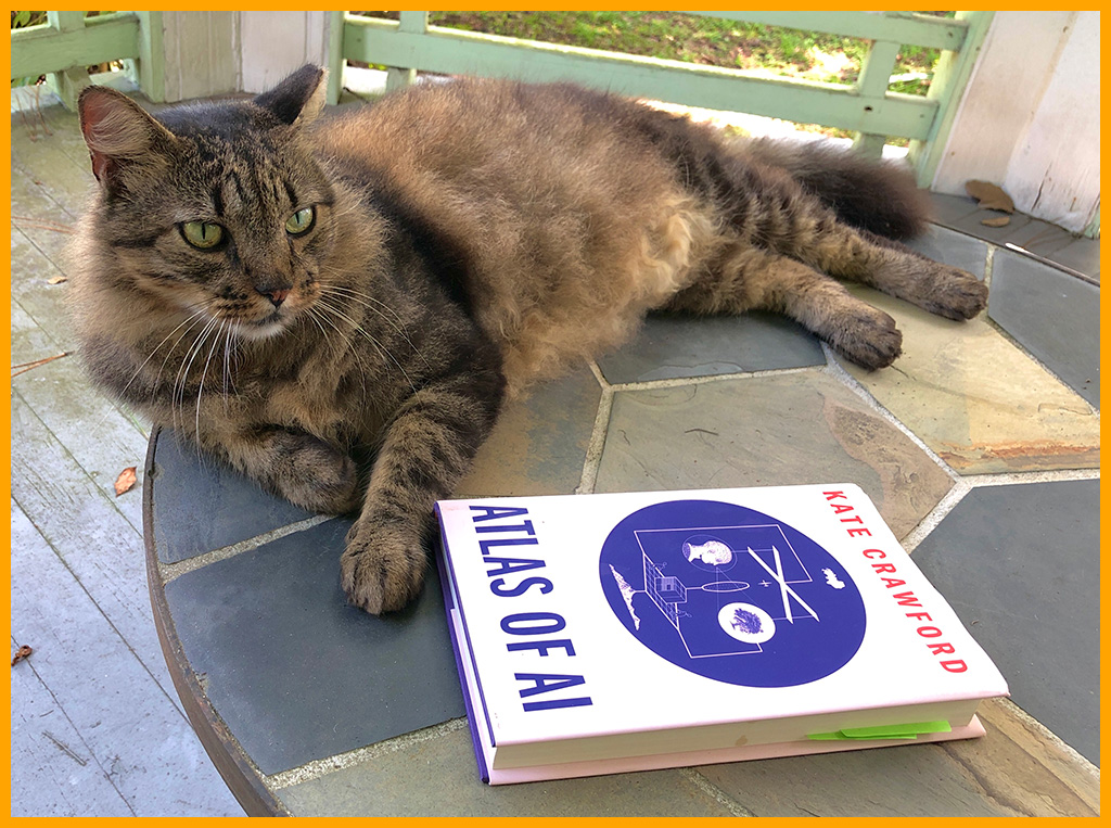 Photo: Book cover and cat on a porch